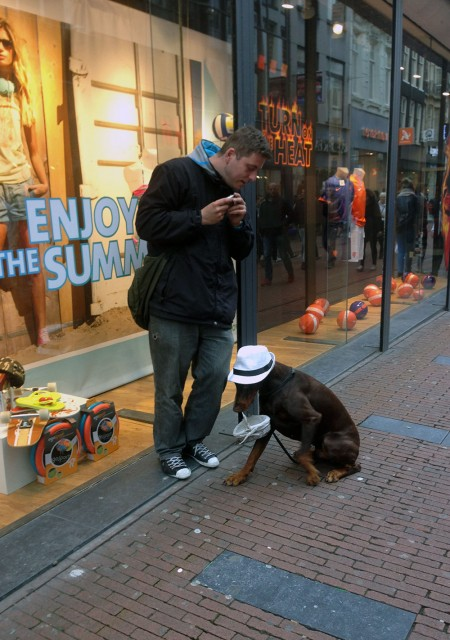 Амстедам отзыв