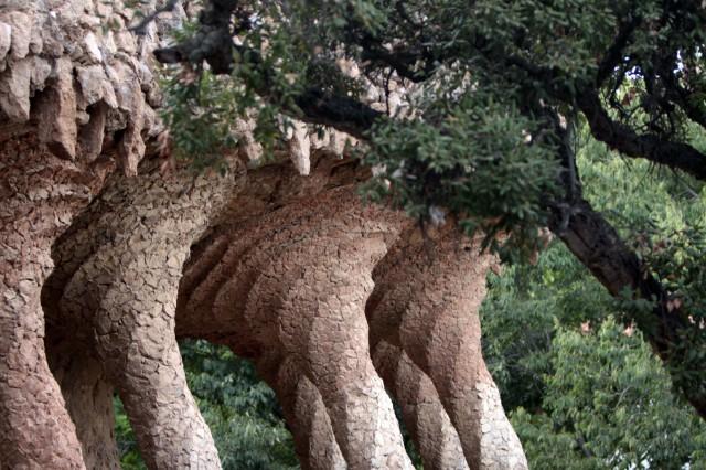 пальмы парк гуэль